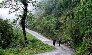 Kurseong Trail, Darjeeling