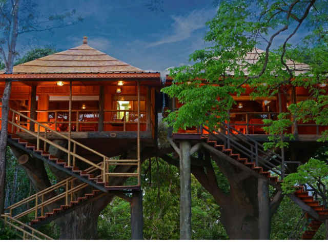 Best Tree House Stays In India