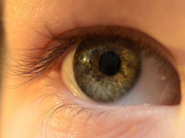 Are you at risk of heart attack? Ask Google to look into your eyes!