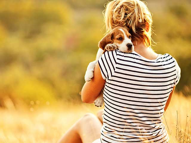 Hate Being In A Relationship And Got A Pet? It's Not The Same, Here's Why