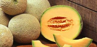 Why Is Musk Melon, The Ultimate Summer Fruit?