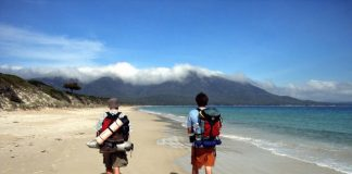 Here's Why You Should Not Miss A Beach Trek In Your Travel Plans