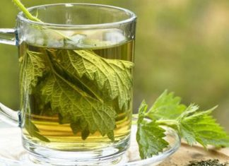 What Are The Health Benefits Of Having Nettle Tea?